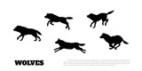 Black silhouettes of flock of wolves on a white background. .Running predators. Forest animals