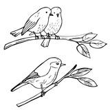 Birds sitting on a branch. Vector sketch illustration.