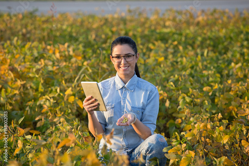 Foto Murales Agronomist with tablet in soybean field