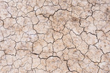 Brown dry soil or cracked ground texture background. - 198004456