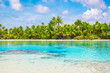 Tropical palm trees and lagoon of Fakarava, French Polynesia. Summer vacation concept.