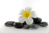 spa concept with candle, stone, flower and bamboo, relaxation - 198033415