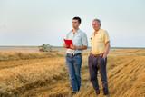 Farmers on wheat harvest - 198052873