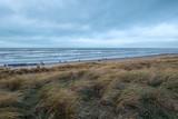 Am Strand der niederländischen Nordsee - 198101007