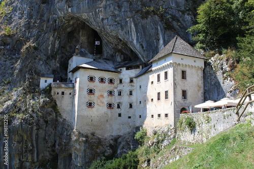 In de dag Olijf Predjama Castle.slovenia