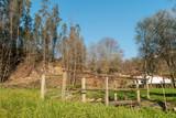 Pedestrian wooden bridge