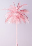 Unusual Pastel Pink Palm 3d illustration - 198140603