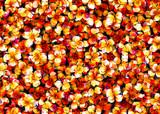 Arrière-plan floral - 198147296