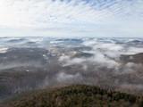 Winter german forest