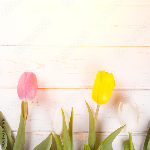 bouquet of tulips - 198166861