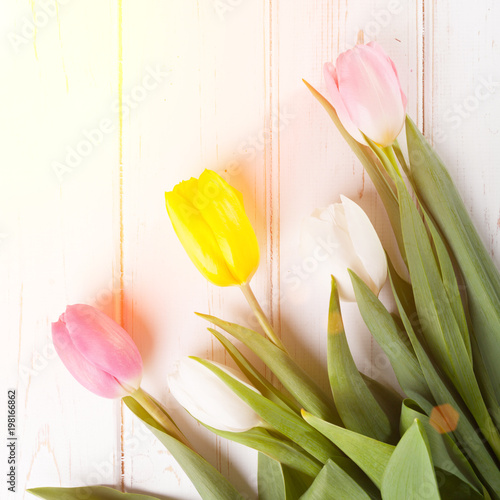 bouquet of tulips - 198166862