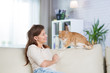 Beautiful adult woman at home on the couch with a redhead cat
