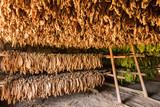 Scheune zum Trocknen von Tabakblättern im Vinales Tal in Kuba