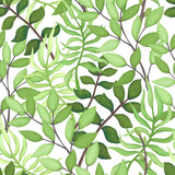 Vector Seamless Pattern of Green Foliage - 198187427