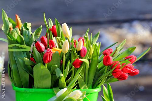 Fresh tulips at a street market