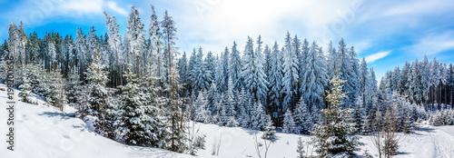 Foto Murales wintertime