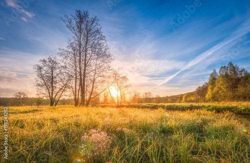 naturalny-sceneria-krajobraz-na-lace-na-jaskrawym-wschodzie-slonca