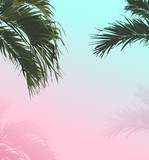palm sweet pastel summer background - 198245883
