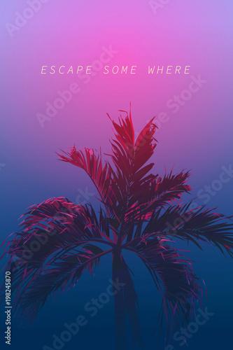 palm 80s neon night escape | Buy Photos | AP Images | DetailView