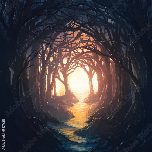 Dark forest leading to light - 198276219