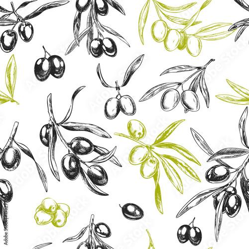 Fototapeta Olive branches, hand drawn retro style vector illustrations.