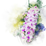 Illustration of beautiful blossom rhynchostylis orchid. Artistic floral abstract background. Watercolor painting (retouch).