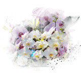 Illustration of beautiful blossom phalaenopsis orchid. Artistic floral abstract background. Watercolor painting (retouch).