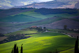 Tuscan countryside in first spring, Tuscany, Italy