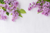 Lilac branches on a light background - 198339885