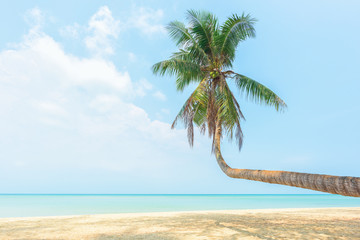 Tropical beach and coconut tree