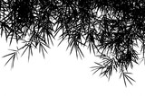 silhouette of bamboo leaves isolated on white background