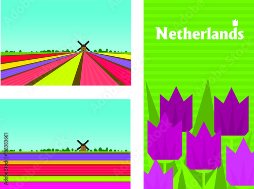 Plexiglas Groene koraal Netherland rural colorful landscape with flower (tulips and hyacinths) fields. Poster, card templates in flat style.