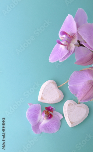 pink orchid and wooden white heart on blue background - 198440442