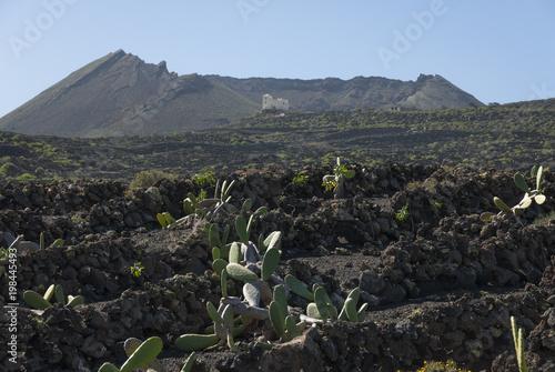 Fotobehang Canarische Eilanden Volcanic landscape at Lanzarote, Canary Islands