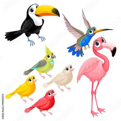 Aluminium Kinderkamer Group of funny tropical birds