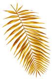 branch of palm gold shiny
