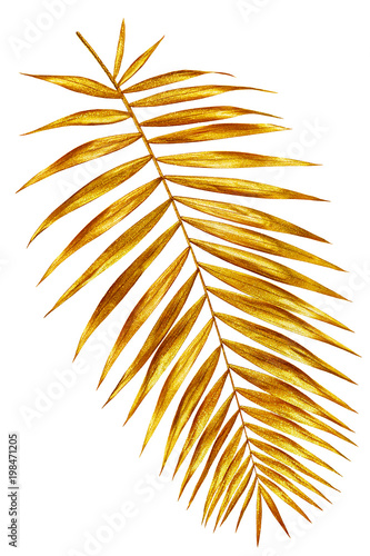 branch of palm gold shiny