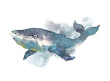 Whale. Sea animal. Watercolor Hand-painted Illustration Isolated on white background