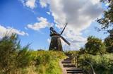 Traditionelle Holländermühle - Windmühle in Benz, auf der Insel Usedom (Deutschland) - 198510450