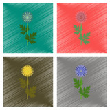 assembly flat shading style illustration flower aster
