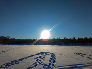 Traces of snowmobile on the fresh snow in a sunny day