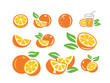 Fresh orange fruits - 198619494