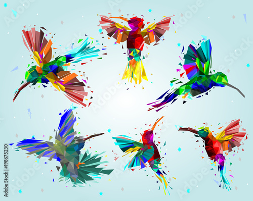 Foto op Plexiglas Vlinders in Grunge Pattern with Low poly colorful Hummingbird with rainbow back ground,animal geometric,party birds concept,vector.