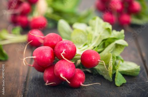Foto Murales Fresh organic radishes