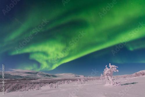 Fotobehang Noorderlicht Amazing Aurora Borealis (Northern lights) in arctic Lapland