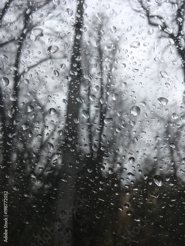 raindrops on window with trees in background