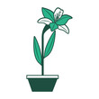 flower lily in a pot decoration icon