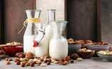 Alternative types of milks. Vegan substitute dairy milk. - 198814485