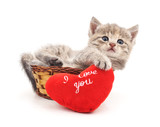 Kitten in a basket with the heart. - 198823069