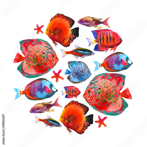 obraz PCV Round composition with tropical fish. Watercolor illustration with hand drawn aquarium exotic fish on white background.